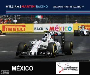Rompicapo di V. Bottas G.P. Messico 2015