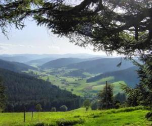 Rompicapo di Valle della foresta nera, Germania