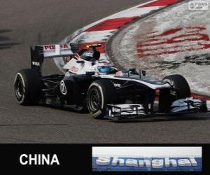 Rompicapo di Valtteri Bottas - Williams - Shanghai 2013