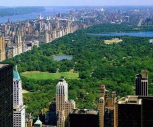 Rompicapo di Veduta aerea del Central Park, New York