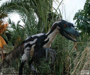 Rompicapo di Velociraptor