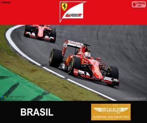Rompicapo di Vettel, G.P del Brasile 2015