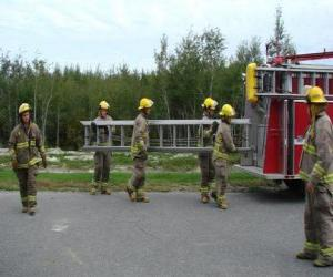 Rompicapo di Vigile del fuoco che porta una scala portatile
