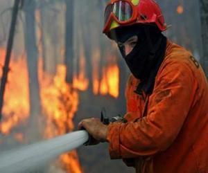 Rompicapo di Vigile del fuoco in azione