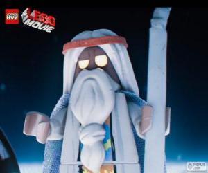 Rompicapo di Vitruvius, il vecchio stregone del film, la grande avventura di Lego