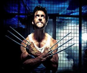 Rompicapo di Wolverine è un supereroe mutante e uno degli X-Men e degli Nuovi Vendicatori