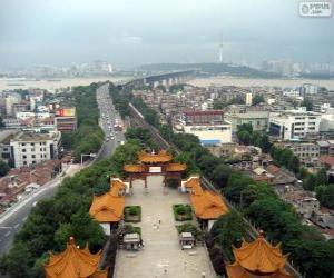 Rompicapo di Wuhan, Cina