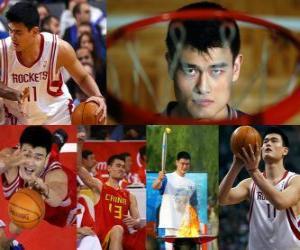 Rompicapo di Yao Ming si ritira dal basket professionista (2011)