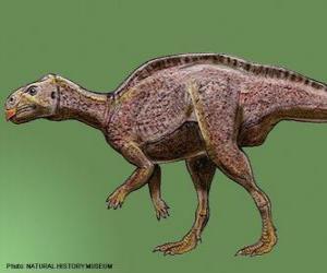 Rompicapo di Zalmoxes vissuto 65 milioni di anni fa