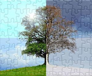 Puzzle di Stagioni e Celebrazioni