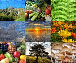 Puzzle di Natura