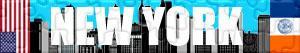 Puzzle di New York